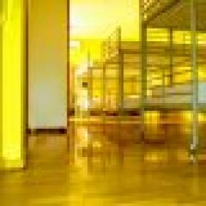 Yellow Nest Barcelona