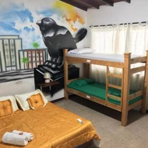Hostéis e Albergues - Hostel Paisa City
