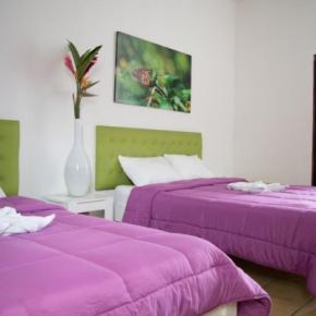 Hostéis e Albergues - Cocoon Hotel