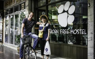 Hostels e Albergues - Born Free Hostel - Vista