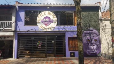 Hostels e Albergues - Purple Monkey Hostel