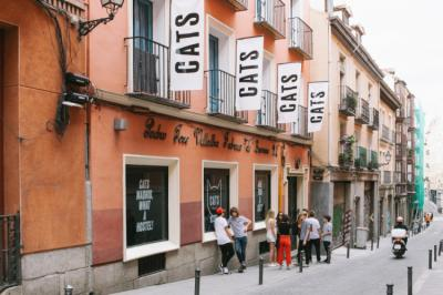 Hostels e Albergues - Cats Chill Out Hostel