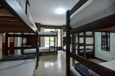 Hostels e Albergues - Ivy Hostel