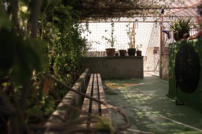 Hostéis e Albergues - Born Free Hostel - Vista
